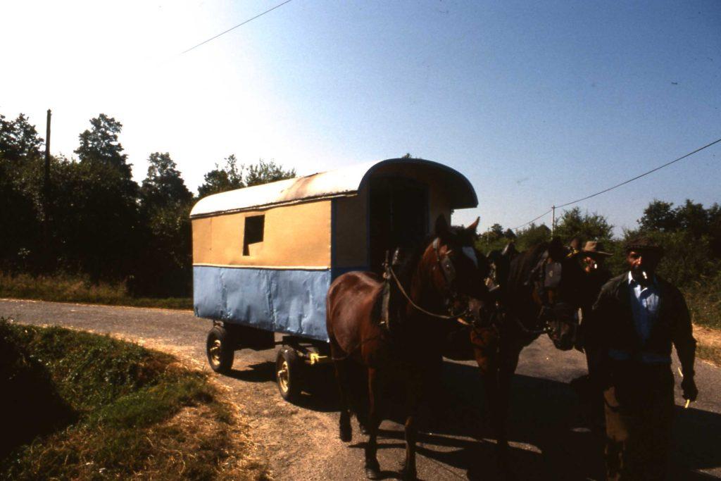 Manouche Horses and Cart